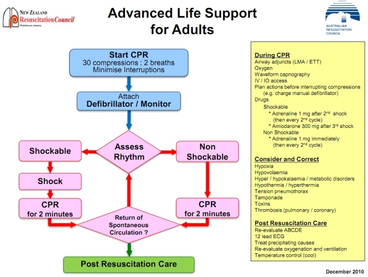 ARC Adule Guidelines