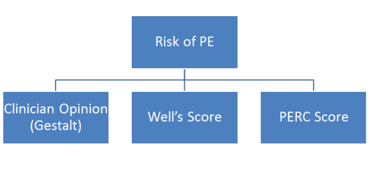 PE Risk