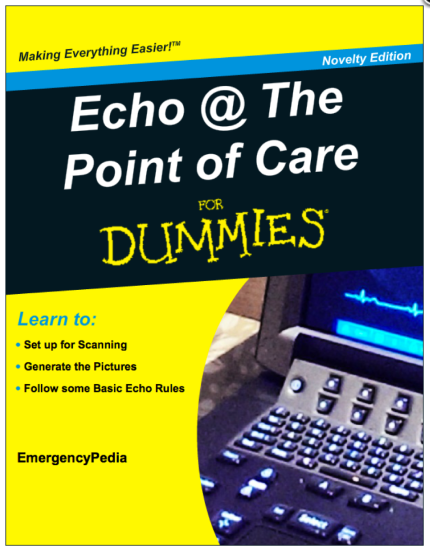 Echo For Dummies