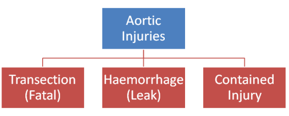 Aortic Injuries