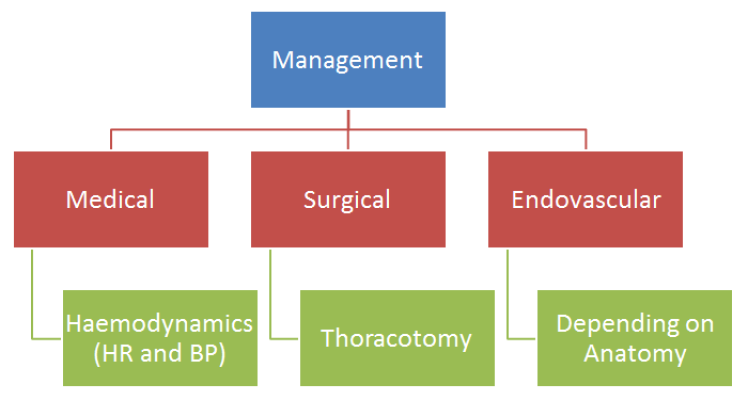 Management of Aortic Injuries