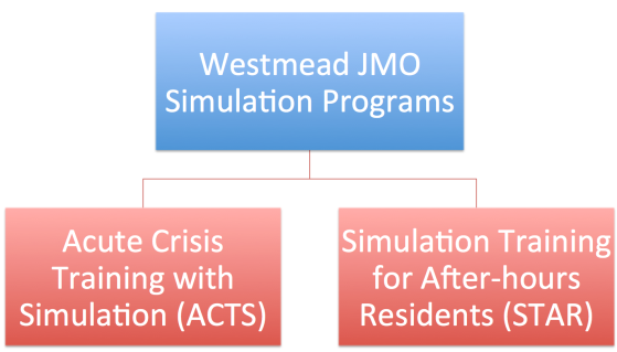 e9c0a2088f Simulation Courses (Westmead Hospital) – EmergencyPedia