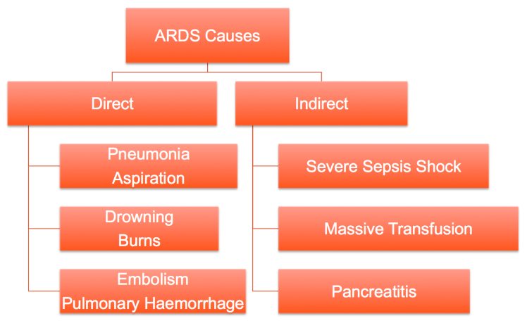 ARDS CAUSES.png
